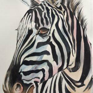 Color Burst Zebra